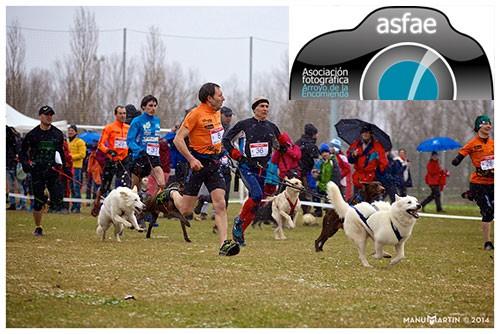 concurso ASFAE canicross 2015