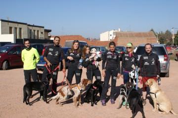 Crónica Canicross Aldeatejada (Salamanca – 15/11/2015)