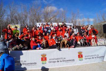 Crónica V Mushing Arroyo de la Encomienda (15/01/2017)